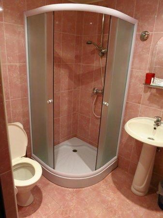 Shirak Hotel : Bathroom