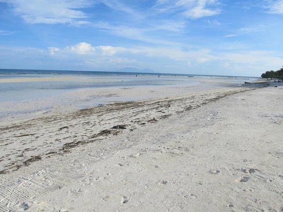 Anda Global Beach Resort