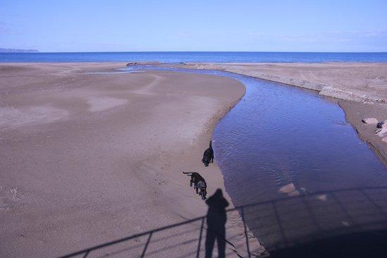 Fundacio l'Olivar : Tranquilas playas de Sant Pere