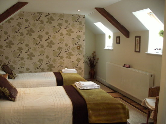 Y Garreg Wen: family size twin room with en-suite