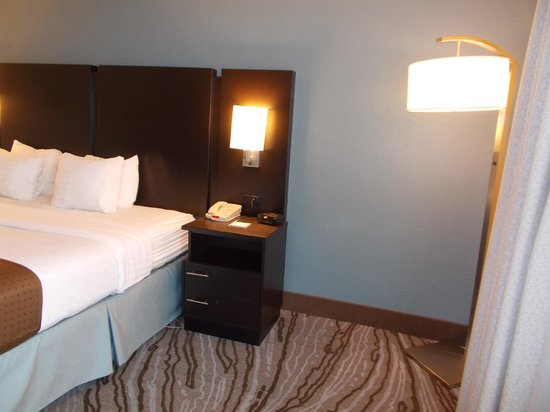Holiday Inn Rock Island - Quad Cities: King Executive Room
