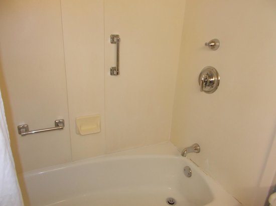Holiday Inn Rock Island: Bathtub could use some updating