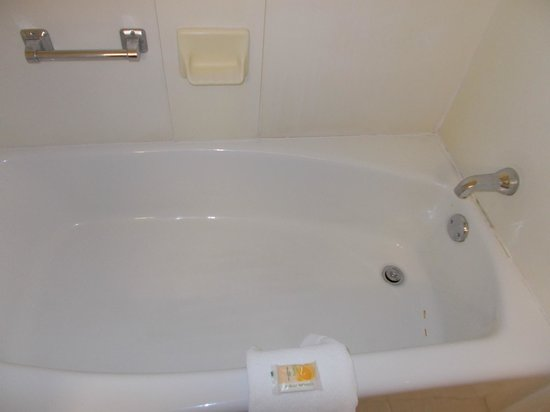 Holiday Inn Rock Island - Quad Cities: Bathtub could use some updating