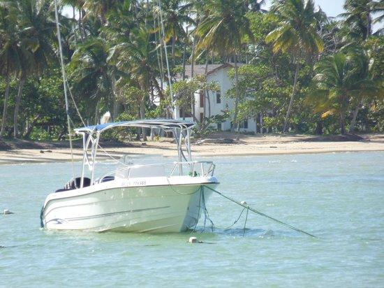 Grand Bahia Principe El Portillo: mooi strant voor hotel