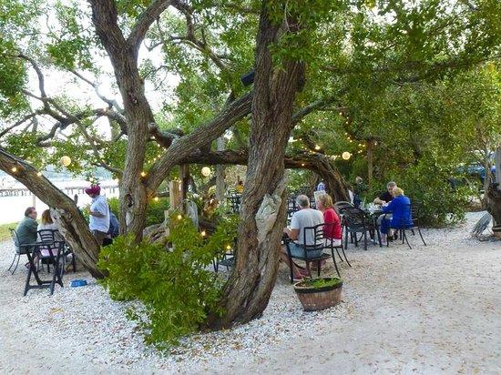 Mar Vista Dockside Restaurant And Pub Longboat Key Fl