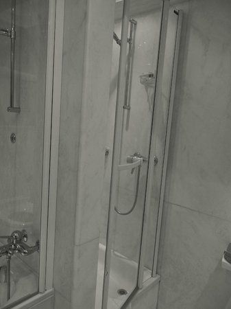 Hotel Bristol: Shower