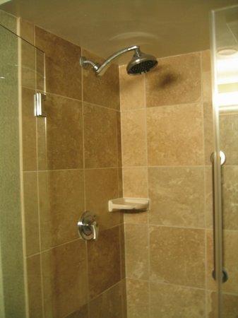 Hampton By Hilton Miami-Coconut Grove/Coral Gables: Excelente ducha sobre a banheira