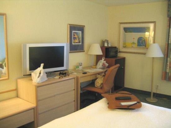 Hampton By Hilton Miami-Coconut Grove/Coral Gables: Mesa com acessorios, Tv com tela grande e frigobar