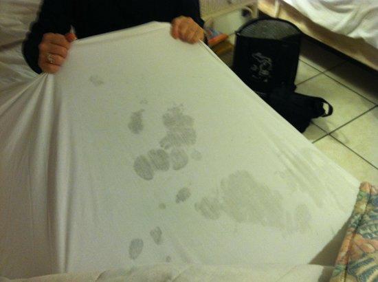 Bonefish Resort: Soiled Top Bed Sheet in February 2013