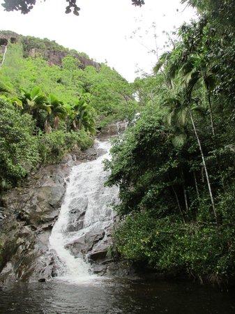 La cascada cercana villas de Jardin