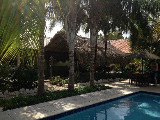 Villa L'Orangerie: Poolarea