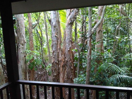 Kewarra Beach Resort & Spa: Ausblick aus dem Bungalow