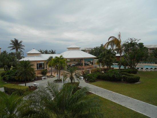 Island Seas Resort: The courtyard of the resort.