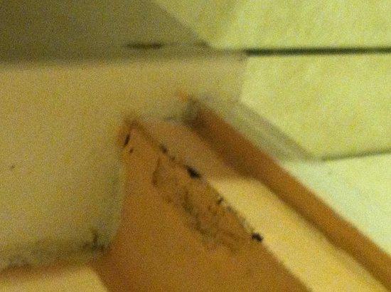 Bonefish Resort: Rusting/Peeling Ceiling Beam.    Feb. 2013