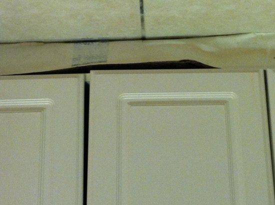Bonefish Resort : Moldering and Unsanitary Kitchenette. Feb. 2013