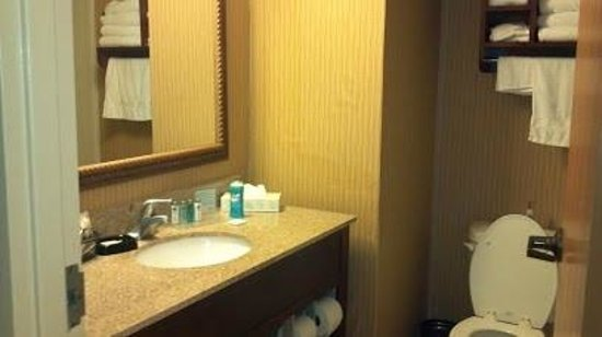 Hampton Inn Jacksonville Downtown I-95 : nicely decorated bathrooms