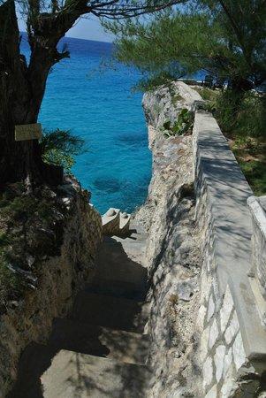 Citronella: Access to the sea