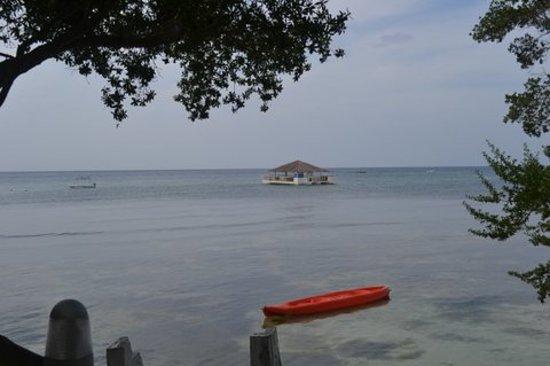 Bluewater Panglao Beach Resort: Kayak and Floating Bar