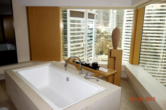 The Upper House: view from bathroom and bath tub