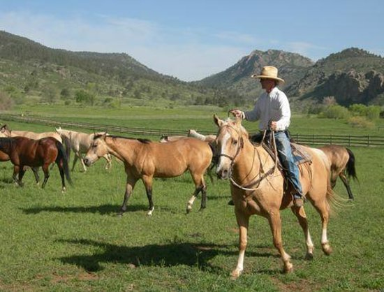 Sylvan Dale Guest Ranch: Working the Ranch
