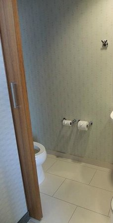 SpringHill Suites Philadelphia Airport/Ridley Park: Toilet only