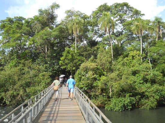 Puerto Iguazú Arts and Crafts Market: Camino hacia la Garganta
