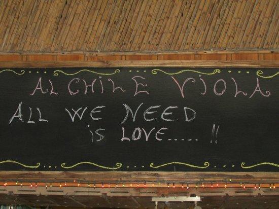 "al chile viola: ""all we need is love"""