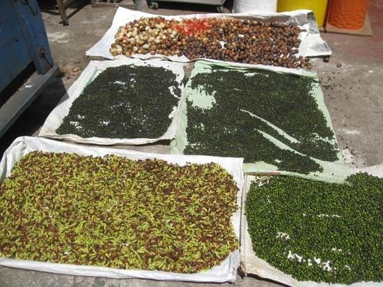 Spice drying right in downtown Kandy. Extend your stay at Freedom Lodge. Savor the atmosphere an