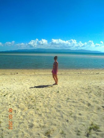 My Phangan Resort : The beach