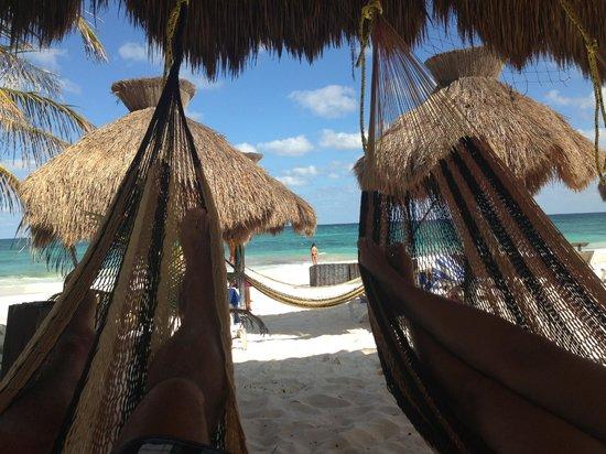 Zulum Beach Club + Cabanas: Hamacas del Zulum