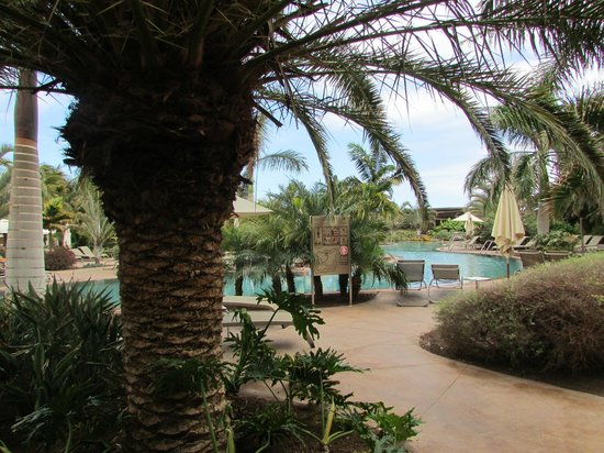Lopesan Baobab Resort: view from my sunbed