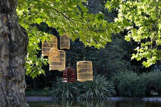 Estancia Villa Maria: Jardines diseñados por Carlos Thays