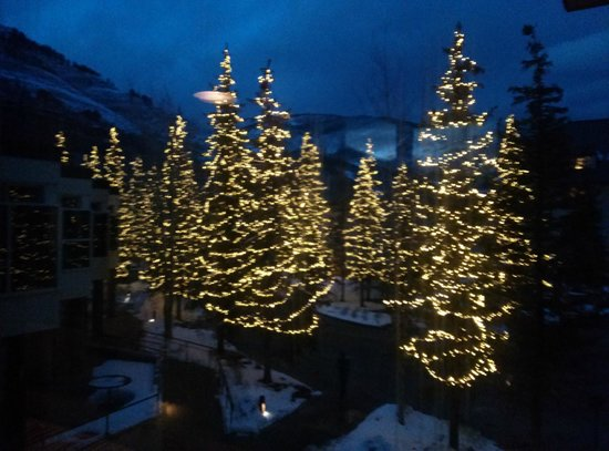 Hotel Talisa, Vail: Trees in the courtyard.