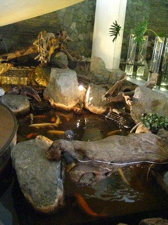 Vivere Hotel: pond