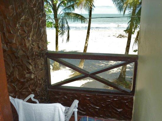 Le Grande Almandier : balcony and beach view