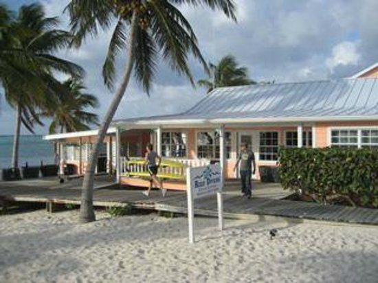 Little Cayman Beach Resort: Dive Shop