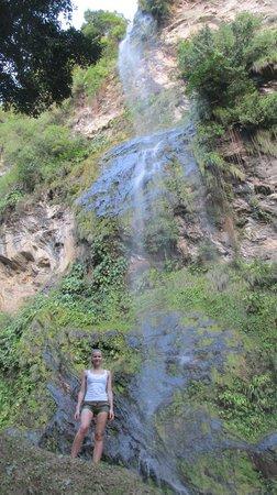Maracas Falls : Nice falls