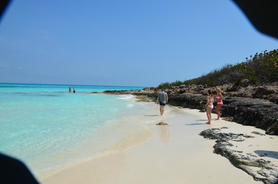 Melia Cayo Santa Maria: End of beach where you can see fish swim up to you