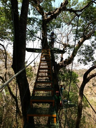 Witch's Rock Canopy Tour : Climbing to the platform
