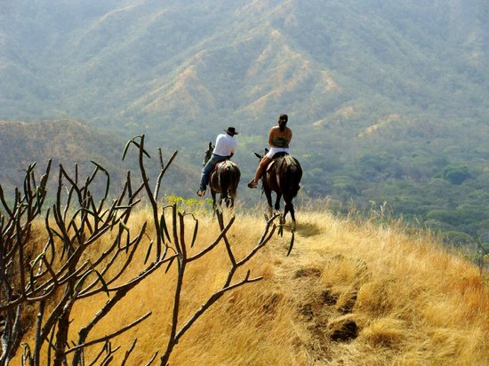 Playa Matapalo, Costa Rica: mountain top horse back
