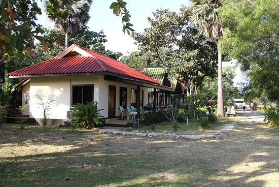 Lanta Nice Beach Resort: cottages from back of garden row lane