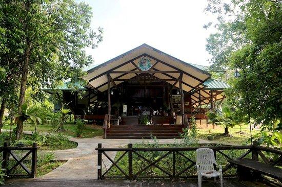 Proboscis Lodge Bukit Melapi: Proboscis Lodge