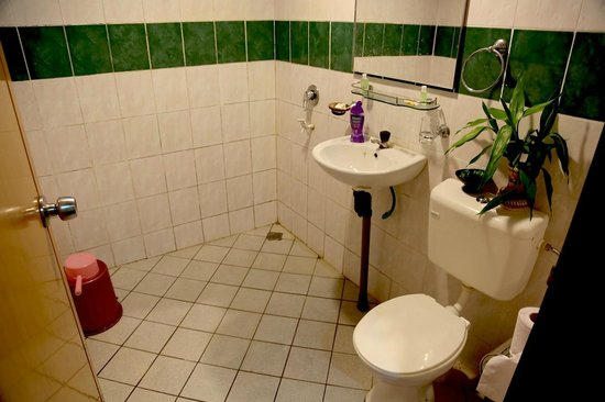 Proboscis Lodge Bukit Melapi : Proboscis Lodge - Bathroom