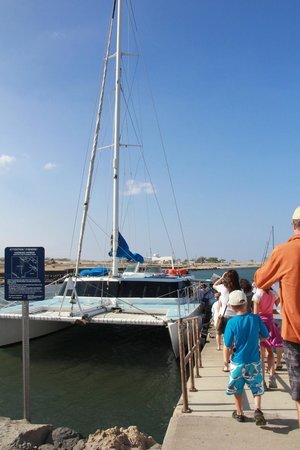 Ocean Sports Whale Watch Adventure: About to board