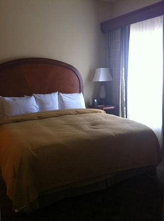 Homewood Suites by Hilton Jackson Ridgeland: king bed