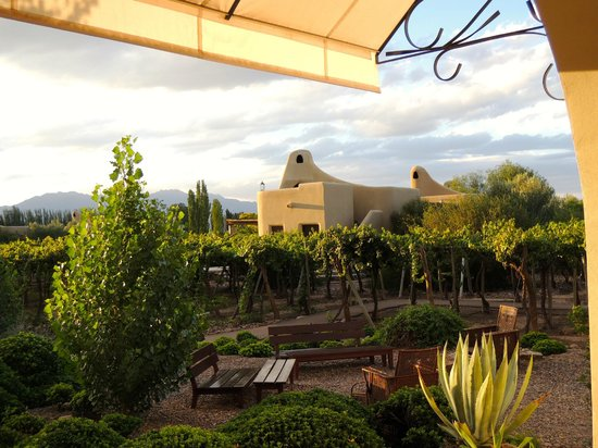 Cavas Wine Lodge: View of the casitas amidst vineyards