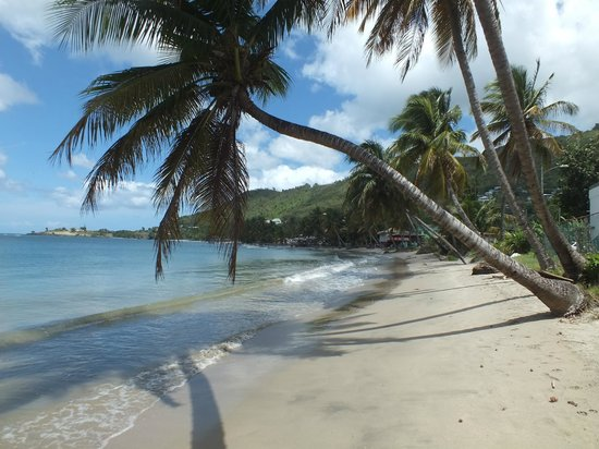 Bay View Apartments: Down on Laborie beach