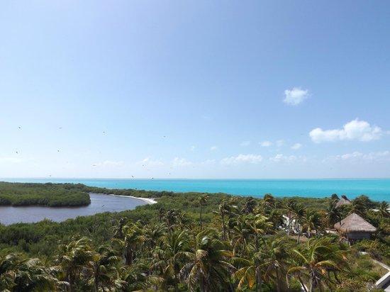 Isla Contoy: laguna e vista sull'oceano