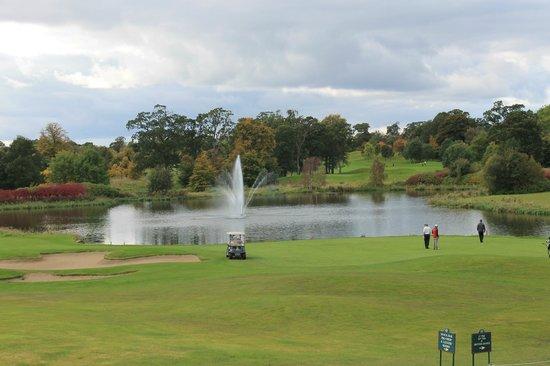 The K Club: golf course