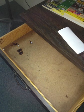 Mountain Empire Motel: Inside the bureau drawers